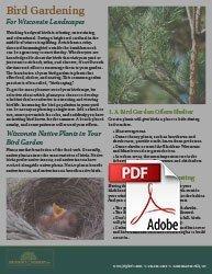 how to build a bird garden in wisconsin johnson's nursery pdf handout on birdscaping img