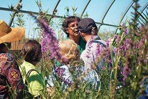 where ecology meets ecomony 2015 mike yanny michael yanny jn plant selections johnson's nursery catalog