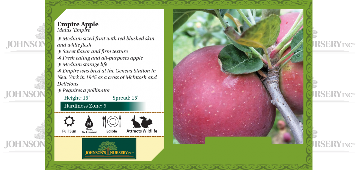 empire apple malus domestica benchcard