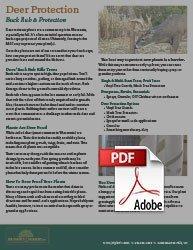 wisconsin deer resistant plants buck rub and deer protection