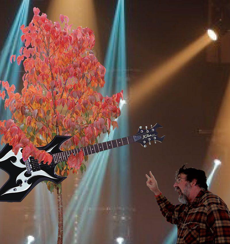 metal trees mike yanny ftimg