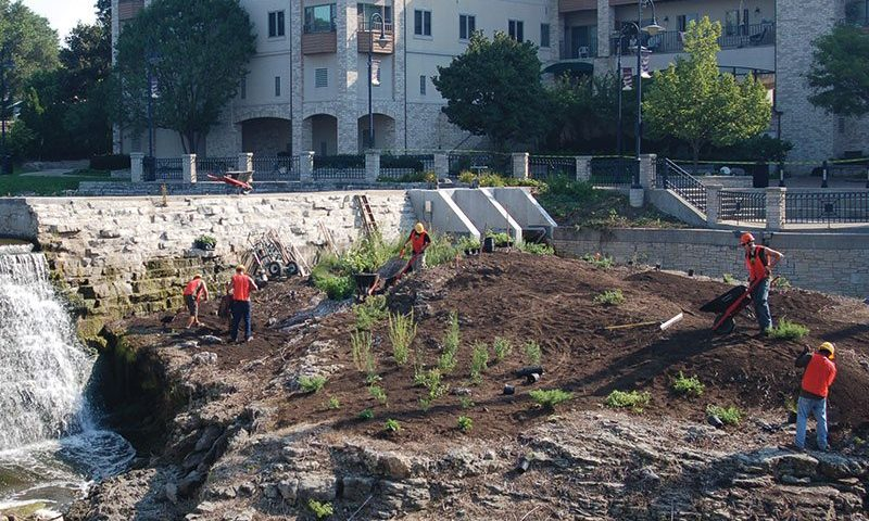urban site challenges mill pond johnson's nursery urban approved plants