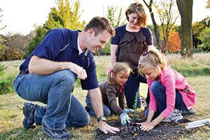 we plan you plant johnson's nursery gardens landscape design diy step 6 begin planting
