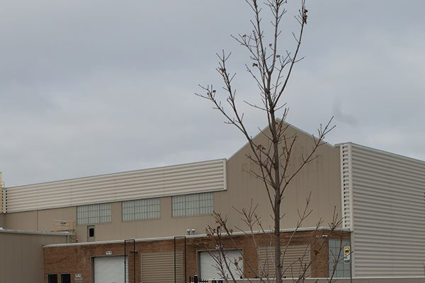 municipal services johnson's nursery grow agreements tree installation container grown milwaukee